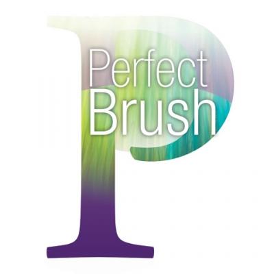PERFECT BRUSH