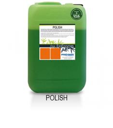 Polish Evoenzymes