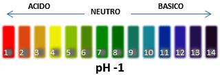 Scala PH 1